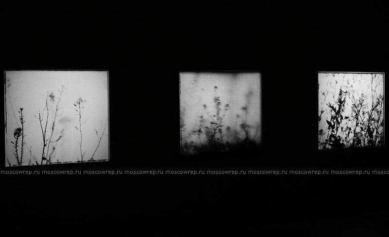 москва, выставки, МДФ, Московский репортаж, Марко Делогу, Marco Delogu
