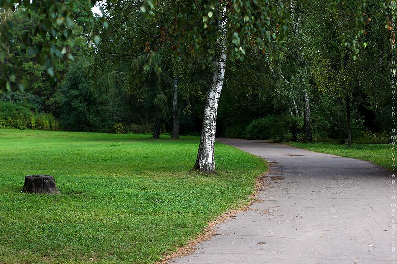 Московский репортаж, Москва, Ботанический сад