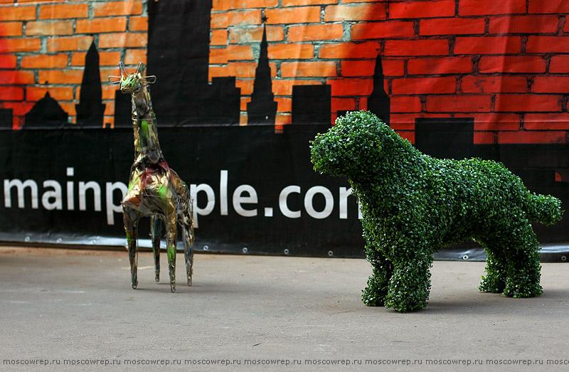 Московский репортаж, Москва, Flower Power, Красный Октябрь