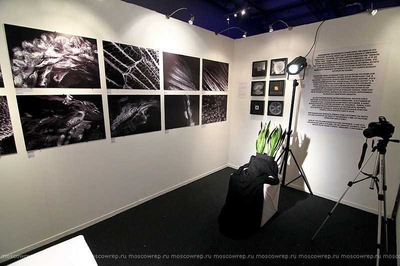 Московский репортаж, Москва, ЦДХ, фестиваль науки