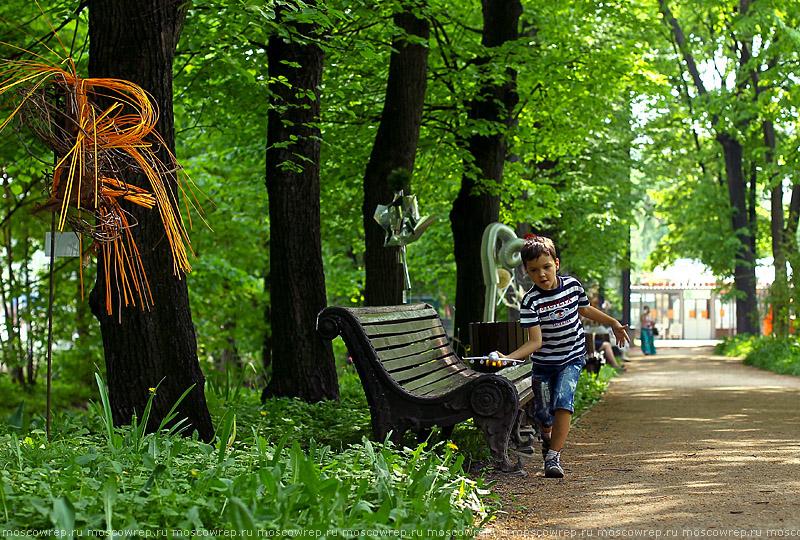 Московский репортаж, Москва, Аптекарский огород, Икебана