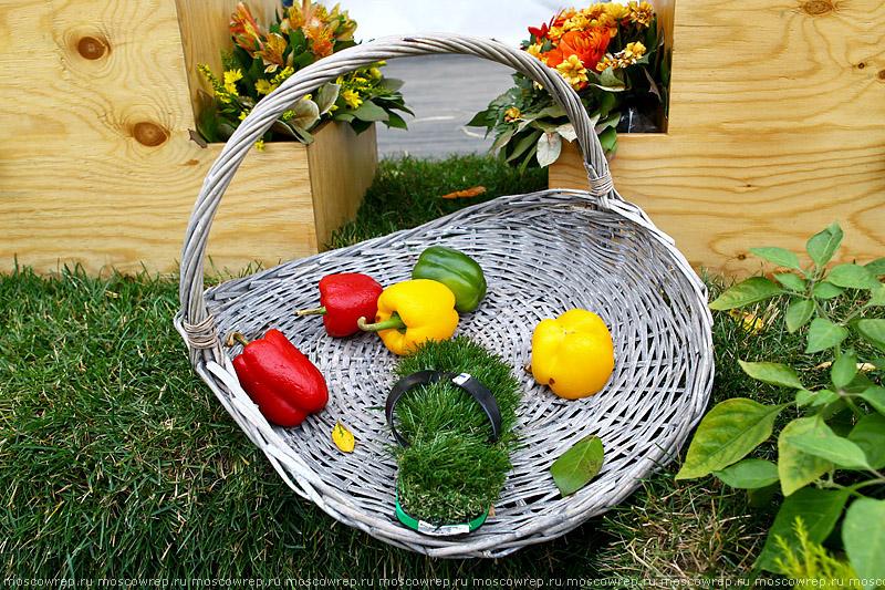 Московский репортаж, Москва, Парк Горького, Moscow Flower Show