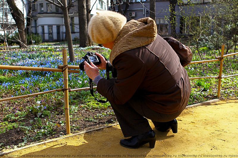 Москва, Московский репортаж, Аптекарский огород, Фестиваль цветов