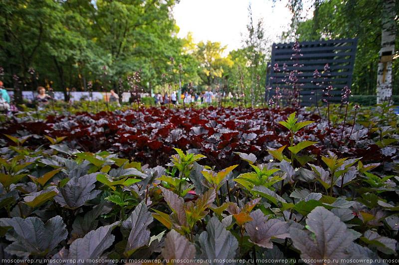 Москва, Московский репортаж, парк Сокольники, сады и люди