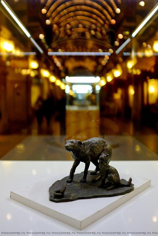 Москва, Московский репортаж, Дарящие надежду