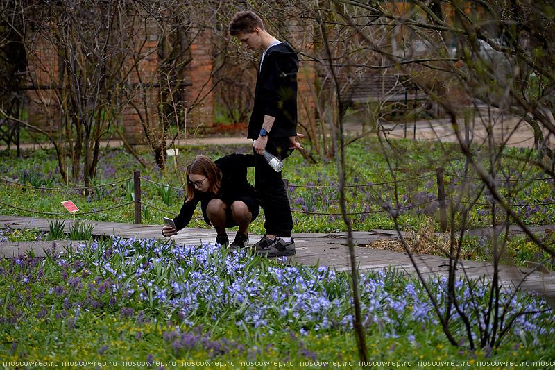 Московский репортаж, Москва, Pharmacy garden, Flower Festival, Аптекарский огород, Фестиваль цветов,