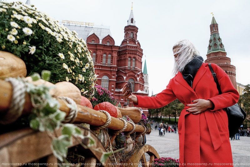 Московский репортаж, Москва, Золотая осень, Московские сезоны